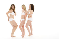 Portrait Of Women In Their Underwear Royalty Free Stock Photo