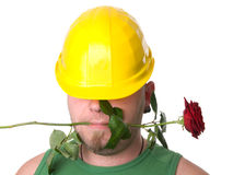 Portrait of a worker with rose. Stock Photography