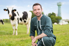 Portrait of a young attractive farmer in a pasture with cows. View of a young attractive farmer in a pasture with cows stock image