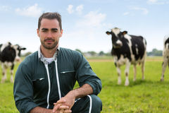 Portrait of a young attractive farmer in a pasture with cows. View of a young attractive farmer in a pasture with cows stock photography