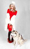 Portrait of a young attractive woman with a husky dog. Over grey background Royalty Free Stock Photos