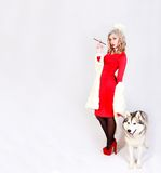 Portrait of a young attractive woman with a husky dog. Over grey background Stock Photography