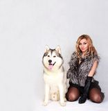 Portrait of a young attractive woman with a husky dog Stock Images