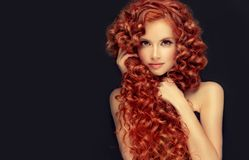 Portrait of young, attractive young model with incredible dense, long, curly red hair.Frizzy hair. stock photos