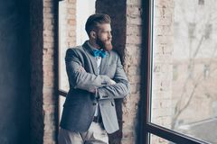 Portrait of young bearded guy with mustache in a suit stands on. A gray background and purposefully looks out the window royalty free stock image