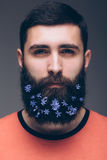 Portrait of young bearded hipster man with flowers in his beard Royalty Free Stock Image