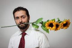 Portrait of a young bearded man with sunflowers. In his mouth Royalty Free Stock Photo