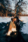 Portrait of a young beautiful blonde woman with hat, in a fur coat, outside, on the snow Stock Photo