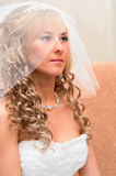 Portrait of a young beautiful bride Stock Photos