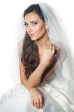 Portrait of the young beautiful bride Royalty Free Stock Image
