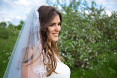 Portrait of young beautiful bride in blooming garden Stock Images