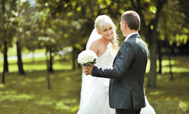 Portrait of the young beautiful bride and groom Stock Photos