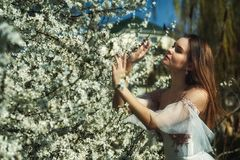 Young romantic girl in white dress in spring garden stock photography