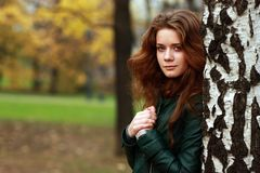 Portrait of the young beautiful girl. On a background of leaves of a birch Stock Photo
