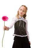 Portrait of a young beautiful girl with flower Royalty Free Stock Images
