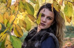 Portrait of a young beautiful girl with long hair in a fur coat during a walk in the autumn park royalty free stock image