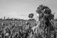 Portrait of a young beautiful girl in a poppy field with a wreath of poppies on her head on a hot summer sunny day Stock Photo