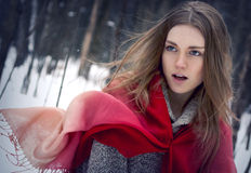 Portrait of the young beautiful girl with red scarf in the winte Stock Photos