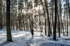 Portrait of a young beautiful red hair european girl in dark winter forest Royalty Free Stock Photography