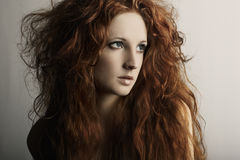 Portrait of a young beautiful redheaded woman Stock Photography