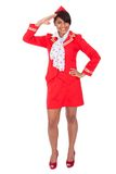 Portrait of young beautiful stewardess Royalty Free Stock Photos
