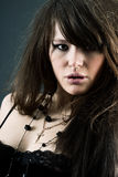 portrait of a young beautiful woman Royalty Free Stock Photos