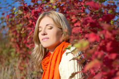 Portrait of young beautiful woman dreaming in autumn park Royalty Free Stock Photography
