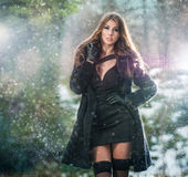 Portrait of young beautiful woman outdoor in winter scenery. Sensual brunette with long legs in black stockings posing fashionable. In a park covered with snow Royalty Free Stock Image