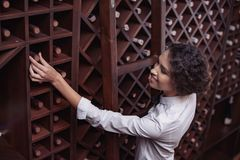 Portrait of young beautiful woman. Sommelier choosing wine in cellar stock image