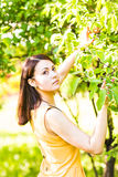 Portrait of young beautiful woman in spring blossom trees Stock Photo