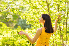 Portrait of young beautiful woman in spring blossom trees Stock Images