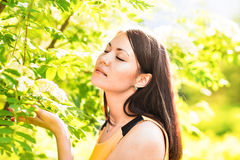 Portrait of young beautiful woman in spring blossom trees Royalty Free Stock Image