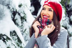 Portrait of young beautiful woman in winter time - Image royalty free stock photos