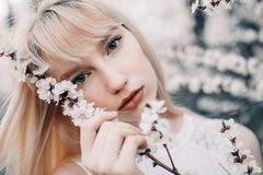 Portrait of young woman among blooming apricot tree. Royalty Free Stock Photos