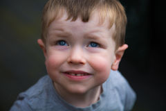 Portrait of young blue eyed boy royalty free stock images