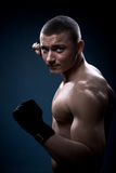 Portrait of a young boxer Royalty Free Stock Photo