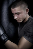 Portrait of a young boxer Royalty Free Stock Photos