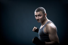 Portrait of a young boxer Royalty Free Stock Images