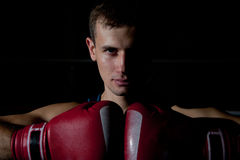 Portrait of young boxer Stock Photography