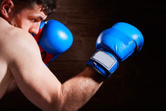 Portrait of young boxer fighter with boxing gloves against wooden wall. Royalty Free Stock Photography
