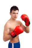 Portrait of boxer Stock Photography