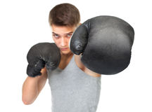 Portrait of young boxer Stock Photos