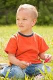 Portrait of a young boy. Royalty Free Stock Photos