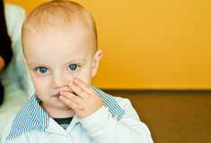 Portrait of a young boy Stock Images