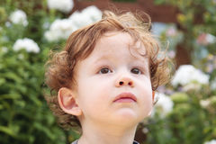 Portrait of a young boy. Portrait of a one year old in a garden Royalty Free Stock Image