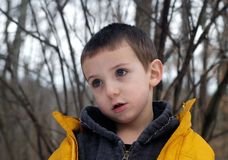 Portrait of young boy. With distracted .expression on face Stock Images