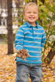 Portrait of a young boy in the autumn park. Royalty Free Stock Photo