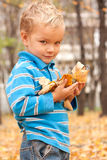 Portrait of a young boy in the autumn park. Royalty Free Stock Photos