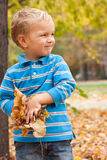 Portrait of a young boy in the autumn park. Stock Photo