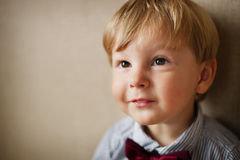 Portrait of Young Boy Wearing Bow Tie Stock Photo